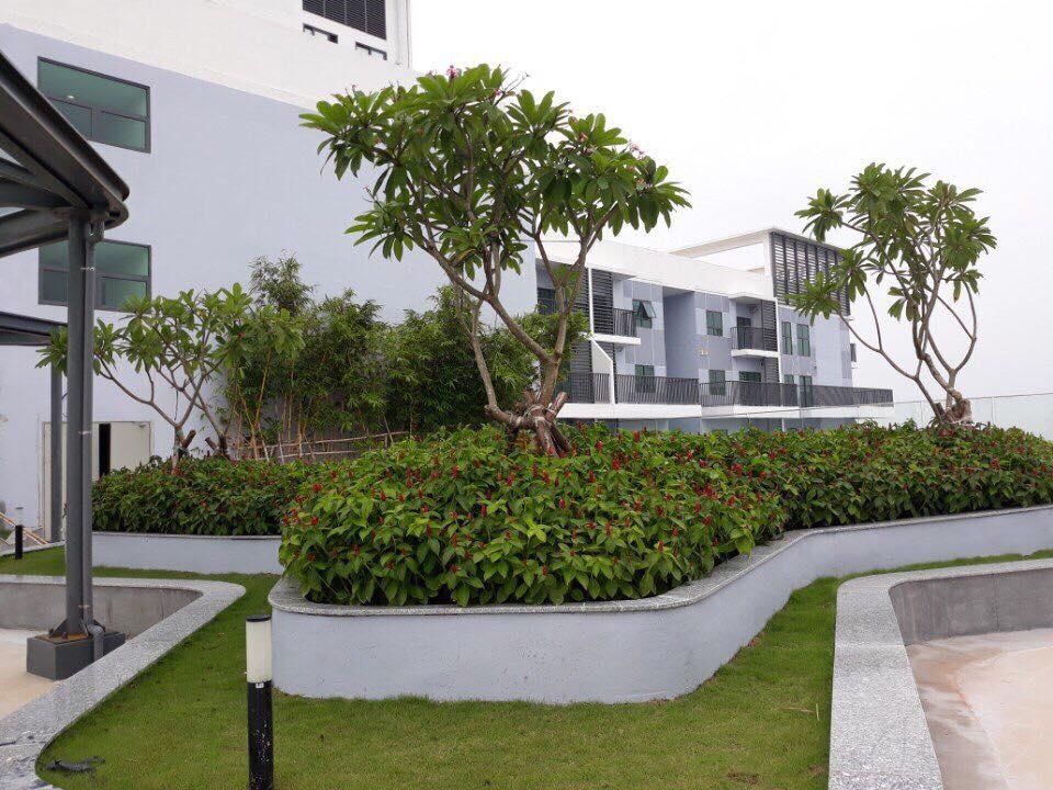 san-vuon-tang-28-the-two-residence