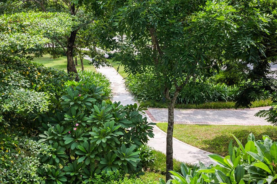 Không gian xanh trong khu đô thị Gamuda Gardens