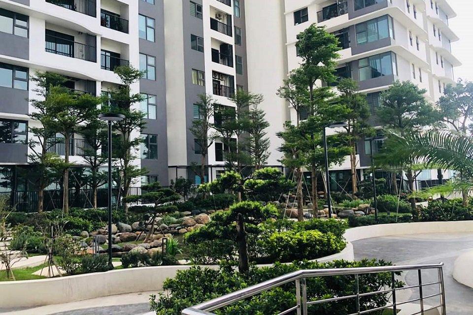 sân vườn chung cư the zen